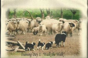Training Day 1: Walk the Walk - Tea Towel
