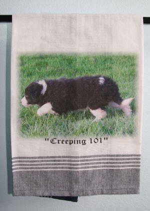 Creeping 101 - Tea Towel -