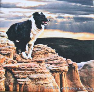 """Border Guard"" Note Card by Vickie Atkins Close"