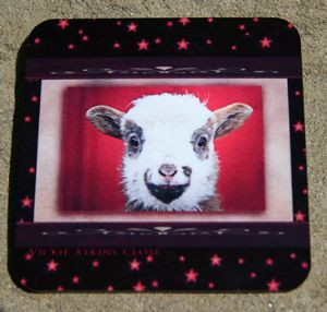 """Sheepish Smile"" Coaster by Vickie Atkins Close"