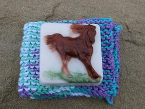 Horse Soap & Wash Cloth set