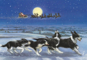 Border Collies & Santa's Sleigh Christmas Card Set