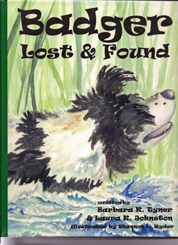 Badger - Lost & Found