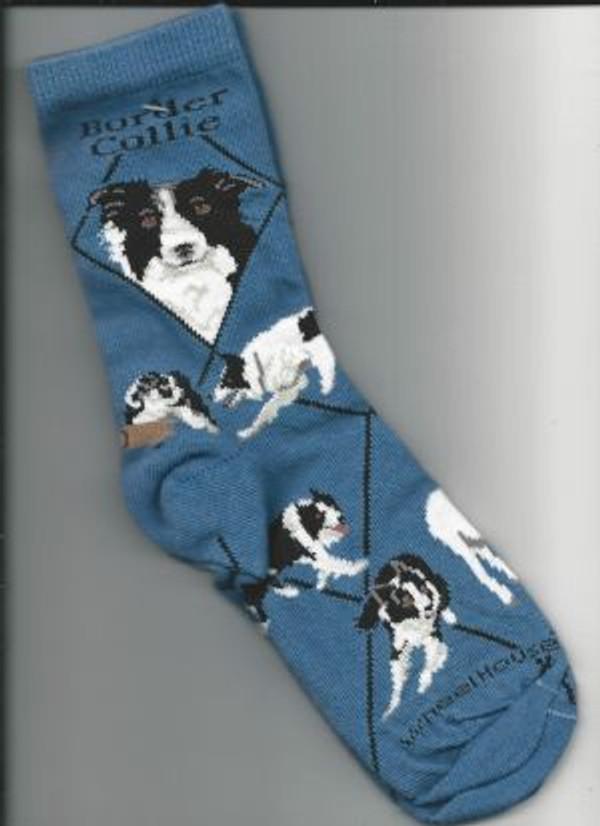Border Collie Socks - Blue