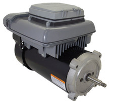 Variable speed ecm pool motor 3 4 hp 2 spd 56j 230v for 2 hp variable speed electric motor