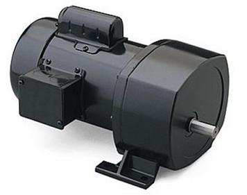 107000_lg__87679.1435082177.356.300?c=2 leeson electric leeson gear motors ac leeson ac gearmotor wiring diagram at eliteediting.co
