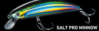 Daiwa Lures - Salt Pro SP Minnow (6 Inch Sinking)