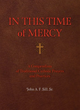 In This Time of Mercy - Hardcover