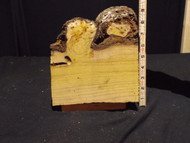 Burl, Black Locust Item 3012