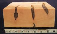 """Ambrosia Maple - 8"""" x 8"""" x 3"""""""