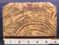 """Ambrosia Maple - 6"""" x 6"""" x 3"""""""