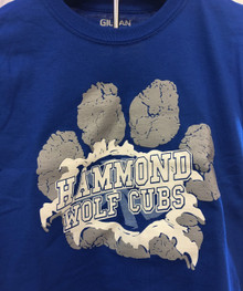 Hammond Spirit T-shirt Adult