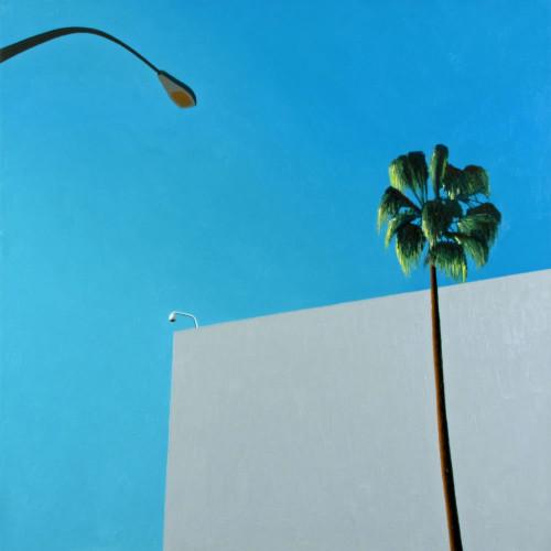 #bluesky #palmtree #beverlyhills #losangeles #la