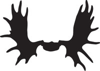 Moose Skull Decal HNT5-341 Big Game Truck Window Stickers