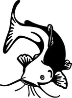 Catfish Decals FSN1-244 Vinyl Fishing Window Stickers