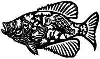Crappie Decal STDL Fishing  Boat Sticker