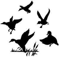 Duck Decal #5 MD Wildlife Outdoors Hunting Bird Stickers