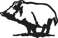 Wild Boar Hog Hunting Decal HNT1-334 Window Sticker