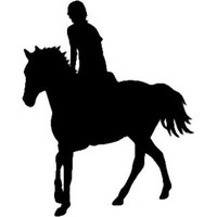 Equestrian Horse Rider Decal ST2010S #047 Vinyl Truck Window Stickers