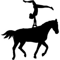 Equestrian Vaulting Decal ST2010S #004 Vinyl Window Stickers