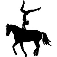 Equestrian Vaulting Decal ST2010S #002 Window Stickers