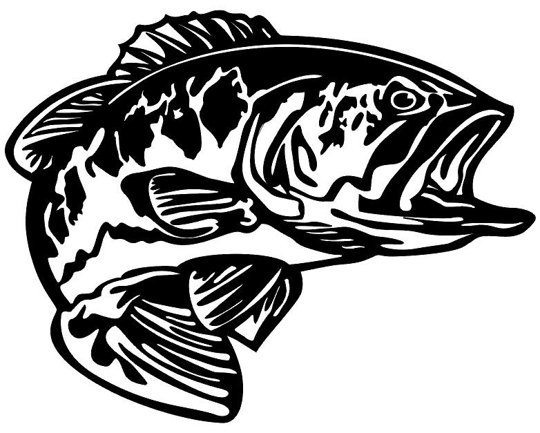 Bass decal md5 vinyl fishing boat sticker wildlife decal for Free fishing stickers