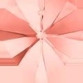 Swarovski Pendant 6228 MM 18,0X 17,5 ROSE PEACH(2pcs)