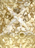Swarovski Fancy Stone 4418 MM 8,0 CRYSTAL GOLD-PAT F(216pcs)