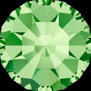 Swarovski Round Stone 1100 - pp1, Peridot (214) Foiled, 1440pcs