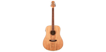 Ashton D26EQ Acoustic Electric Guitar -  Spalted Maple