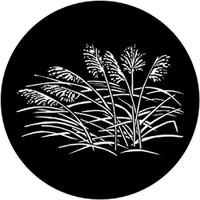 Rosco 71029 Grasses 2