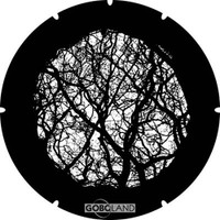 Branches 6