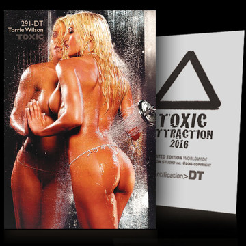 Torrie Wilson / The Illusion [ # 291-DT ] TOXIC ATTRACTION cards