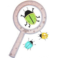 Magnifying Beetle