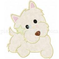 Yorkie Terrier Puppy