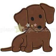 Dotty Puppy