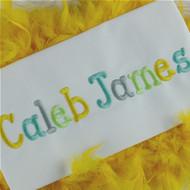 Caleb Embroidery Font Set