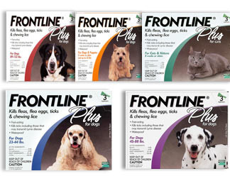Frontline Flea Medication