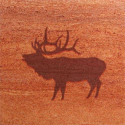 Elk Coasters - Set of 4