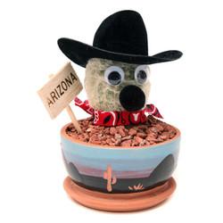 Arizona Cowboy Cactus - 3.5 inch