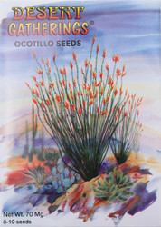 Ocotillo Seeds