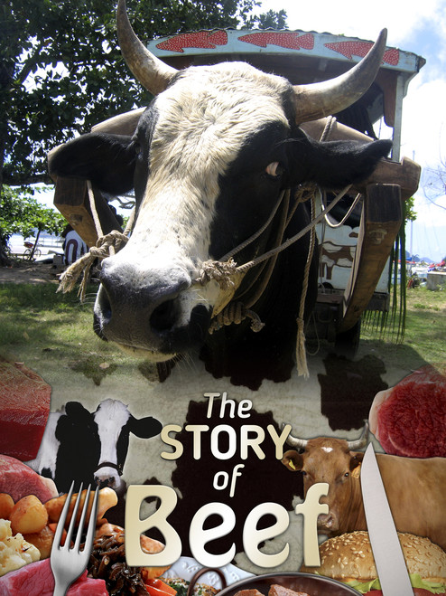 Story of Beef