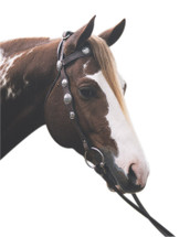 Scalloped Silver Western Bridle