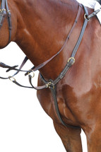 Kincade Sewn Edge Stockmans Breastplate