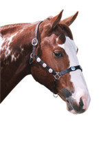 Western Scalloped Headstall