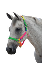 Roma Rainbow Headstall