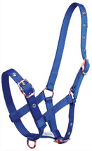 Foal Halter With Coloured Buckles