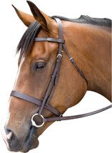 Newmarket's Oxford Flat Cavesson Bridle