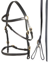 Aintree In-Hand Bridle