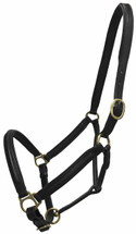 NEW Oxford Leather Halter